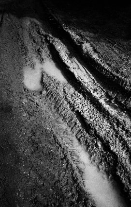 LeicaM6_Foma400_R09_472-1-1