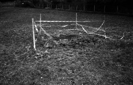 LeicaM6_Foma400_R09_497-1