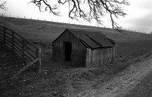 LeicaM6_trix_R09_435-1-1